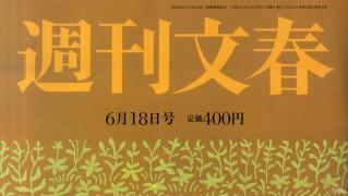 柏木由紀 週刊文春  (1)