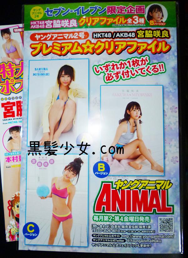 宮脇咲良ヤングアニマル2016年1月22日号 セブンイレブン限定クリアファイル