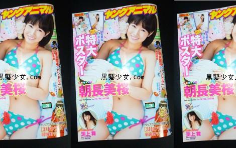 ヤングアニマル HKT48朝長美桜、渕上舞 表紙水着グラビア&ポスター 2016年2月12日号  (3)