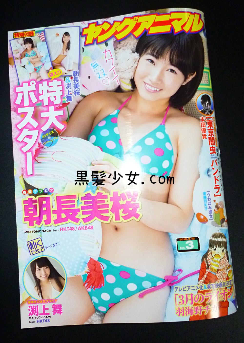ヤングアニマル HKT48朝長美桜 表紙水着グラビア&ポスター 2016年2月12日号
