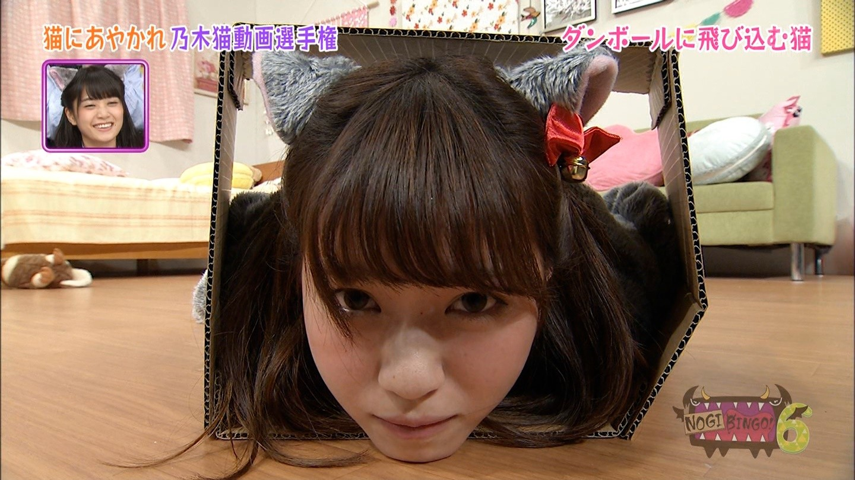 乃木猫 画像 西野七瀬 (11)